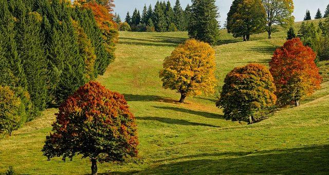 Podzimní pobyty na chalupě